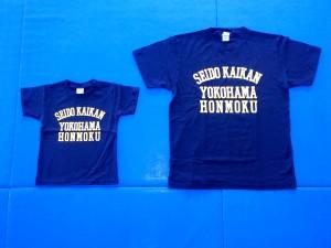 Naka-Ku Yokohama-Shi-20140407-01555